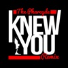 Knew You (Simeon Viltz Remix) - Single ジャケット写真