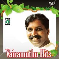 Vairamuthu Hits Vol 2 (26 Tamil Songs)