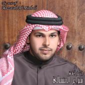 The Best of Hazza ah Al Minhali