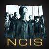 NCIS, Season 6 wiki, synopsis