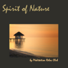 Spirit of Nature: Relaxing New Age Nature Sounds Meditation Music for Yoga, Reiki, Qi Gong and Tai Chi - Meditation Relax Club