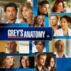Grey's Anatomy, Season 8 wiki, synopsis