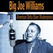 American Delta Blues Masterpieces