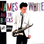 James White & The Blacks - Stained Sheets