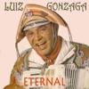 Luiz Gonzaga Eternal