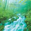Dan Gibson's Solitudes - Appalachian Mountain Suite artwork