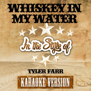 Ameritz Karaoke Entertainment - Whiskey in My Water (In the Style of Tyler Farr) [Karaoke Version]