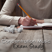 Concentration Music Exam Study – Instrumental Background Music for Studying, New Age as Brain Food for Mind Power