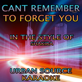 [Download] Can't Remember to Forget You (In the Style of Shakira and Rihanna) MP3