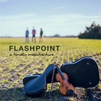 A Timely Misadventure - EP by Flashpoint on Apple Music