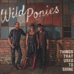 Wild Ponies - Trouble Looks Good on You