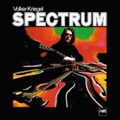 Volker Kriegel - More About D