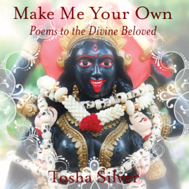 Make Me Your Own: Poems to the Divine Beloved (Unabridged) audiobook