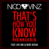 Nico & Vinz - That's How You Know (feat. Kid Ink & Bebe Rexha) [Wideboys Remix] artwork