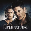 Supernatural, Season 7 wiki, synopsis