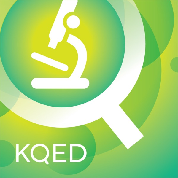 KQED Science Video Podcast