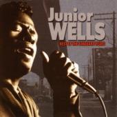 Junior Wells: Best of the Vanguard Years