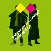 """Pet Shop Boys - Pet Shop Boys """"Brits"""" medley"""