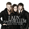 Lady Antebellum - Need You Now MP3