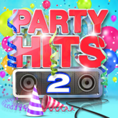 Party Hits 2  Various Artists - Various Artists