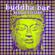 Buddha Bar - Buddha Bar Best of Electro: Rare Grooves