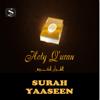 Surah Yaseen (feat. Sheikh Abdool Wadood Haniff) - Simtech Productions