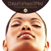 Chillout for Peace of Mind - 20 Smooth & Balancing Chillout Tunes Session One