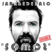 Jarabe De Palo - Somos (con Gabylonia y La Duende)