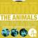 The Animals Photo