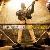 Joe Louis Walker - Hornet's Nest