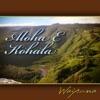 Aloha E Kohala - Single ジャケット写真