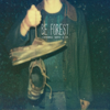 Be Forest - Hanged Man artwork