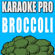 Broccoli (Originally Performed by D.R.A.M.) [Instrumental Version] - Karaoke Pro
