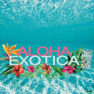 Aloha Exotica - Jazztronik, Gen Tamura & Toshiyuki Yasuda album