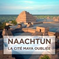 Télécharger Naachtun, la cité Maya oubliée Episode 1