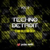 Techno Detroit, Vol. 2 (Techno Collection for DJ's), Various Artists