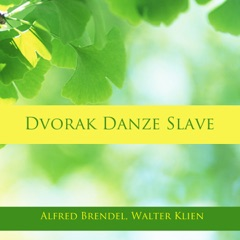 Slavonic Dances, Op. 72, B. 145: No. 4 in D-Flat Major, Dumka. Allegretto grazioso