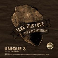 Take This Love (Black Art Remixes) - Single