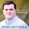 Bryniau Aur fy Ngwlad - Robin Gruffudd
