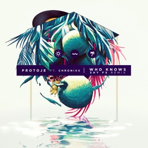 Protoje - Who Knows feat. Chronixx [SHY FX Remix]
