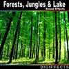 Digiffects Sound Effects Library - Medium Wind Rustling Leaves in Aspen Forest