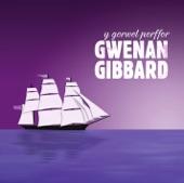 Gwenan Gibbard - Patagonia