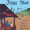 Lost Dogs + Mixed Blessings - John Prine