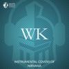 White Knight Instrumental - Lake of Fire