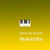 Primavera  David De Miguel - David De Miguel