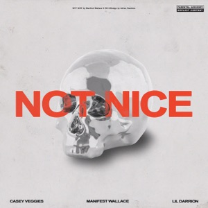 Not Nice (feat. Casey Veggies & Lil Darrion) - Single Mp3 Download