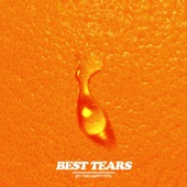 The Happy Fits - Best Tears