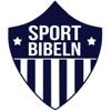 Sportbibelns Hockeypodcast med Bjure och Erland