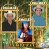 Bambuzal - Delmir & Delmon & Tostao