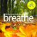 Benjamin P Bonetti - Breathe - Effective Stress Reduction: Work Pressures: Mindfulness Meditation